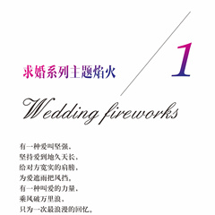 求婚系列主题焰火