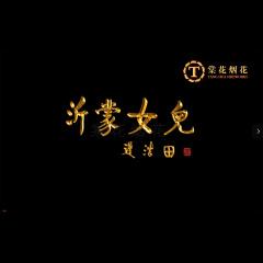 """""""沂蒙女儿""""褚海辰独唱音乐会焰火节选"""