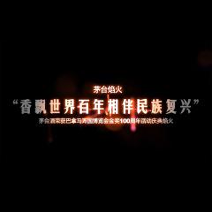 2015贵州茅台酒焰火庆典精彩剪辑