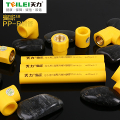 PPR管系列-PPR铜芯管皇家系列-天力管