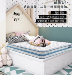 床垫-青少年护脊床垫益智B1系列-美国舒达床垫